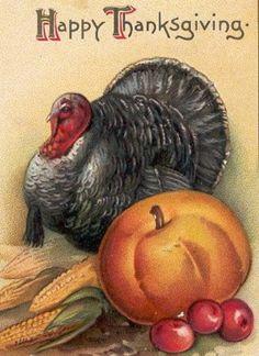 vintage thanksgiving images | vintage-thanksgiving-turkey-pumpkin-fruit-clipart