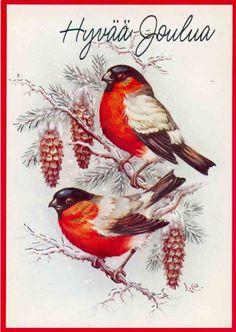 "Photo from album ""Lars Carlsson"" on Yandex. Christmas Scenes, Christmas Cards To Make, Christmas Colors, Christmas Art, Winter Christmas, Vintage Christmas Images, Christmas Pictures, Bird Theme, Rabbit Art"