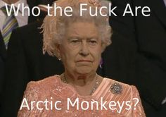 artic monkeys are everything!