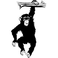 Cartoon Monkey Hanging From Tree | Vinyl decal chimpanzee monkey hanging on tree by thoughtsthatstick