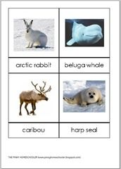Arctic Animals Control Cards (FREE PRINTABLE)