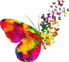 Good Morning Messages Wishes and Quotes - Güzel Sözler Good Morning Picture, Morning Pictures, Good Morning Images, Good Morning Messages, Butterfly Wallpaper, Butterfly Art, Butterfly Painting, Most Beautiful Wallpaper, Beautiful Beautiful