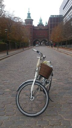 It's allways cool to ride through Carlsberg. :) #diva, #bike, #batavus #Carlsberg, #Copenhagen