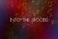 Let's Go into the Woods