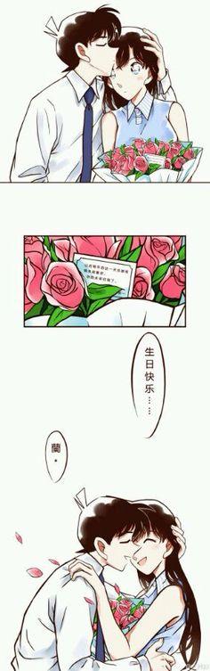 Detective Conan Shinichi and Ran