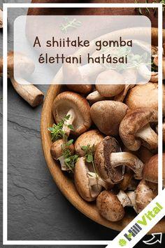 A shiitake gomba a második leggyakrabban termesztett ehető gomba a világon. A gombát étkezésekhez friss, valamint szárított, porított formában is használják. Ez a gomba a hűvös, árnyékos helyeket kedveli, főként friss vizek közelében jelenik meg nagyobb számban. Rendkívül gazdag tápanyagokban, valamint esszenciális aminosavakban, ásványi anyagokban és antioxidánsokban egyaránt. Mindennek köszönhetően a shiitake gomba az egyik leghatékonyabb természetes immunerősítőnek számít. Stuffed Mushrooms, Vegetables, Food, Stuff Mushrooms, Essen, Vegetable Recipes, Meals, Yemek, Veggies