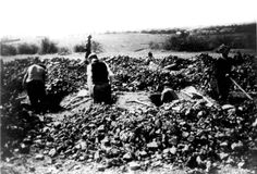 Ohrdruf death camp, Germany, German civilians forced to dig graves for the camp victims. The Ohrdruf camp was liberated by the 80th Division of the American army.