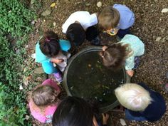5 Reasons You Should Take Your Class Outside - Fairy Dust Teaching Early Years Teacher, Fairy Dust Teaching, Outdoor Learning Spaces, Back To School Night, Montessori Baby, Primary Education, Eyfs, Outdoor Play, The Outsiders