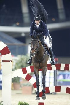 Gregory Wathelet (BEL) and Conrad de Hus on their way to a 5* victory in Doha #showjumping #equestrian #horses