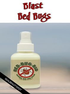Getting Rid of Bed Bugs naturally- Essential oils, such as that of eucalyptus, lavender, peppermint or tea tree have always been used to get rid of bugs. They act as a natural and efficient bed bug repellent.