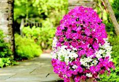 idée déco pour votre jardin ou terrasse avec une tour à fleurs