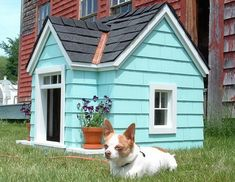 dog house with actual roof shingles