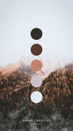 Rustic Mountain Color Palette designed by Amari Creative #rustic #mountain #color #colorpalette #branding