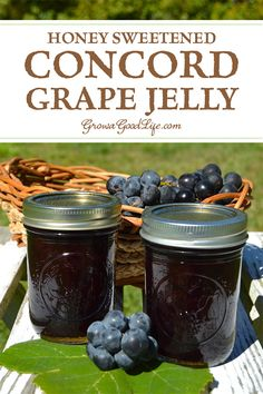 Make and preserve your own homemade Concord grape jelly! Concord grapes have a slightly tart, musky flavor but can be transformed into a delicious grape jelly with a little sweetening. This old-time favorite is sweetened with honey in this recipe. Concord Grape Recipes, Concord Grape Jelly, Grape Jam, Jelly Recipes, Jam Recipes, Canning Recipes, Real Food Recipes, Fruit Recipes, Recipies