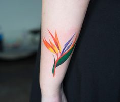 Bird of Paradise flower by Zihee