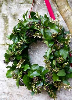 Leafy berried ivy wreath