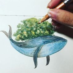 #sketch #artwork #gallery #whale #illustration #watercolor #colorpencil #animalillustration