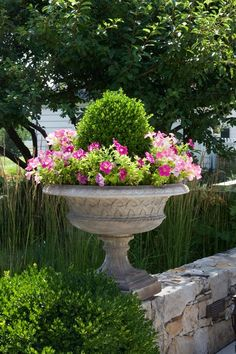 Pink & green, always a winner. Boxwood and petunias in an urn on a stone wall. Classic.
