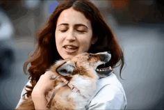 """L'animale e' stato salvato da Emma D'Sylva nello Staffordshire e da 11 mesi vive a stretto contatto con lei e i Labrador di famiglia. Quando e' stata accolta amorevolmente da Emma era ancora un cucciolo e, stare assieme ai cani, ha fatto sì che assumesse gran parte dei loro atteggiamenti: scodinzola quando e' l'ora della pappa e quando vede la sua padrona, va a spasso al guinzaglio e adora giocare alla lotta con i cani. """"Vive in giardino - racconta la proprietaria - ma preferisce stare…"""