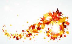 свечение, Листья, осень, ветер