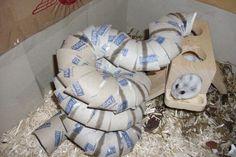 Süss Diy Hamster House, Hamster Diy Cage, Baby Hamster, Hamster Care, Gerbil Toys, Rat Toys, Pet Mice, Pet Rats, Hamster Habitat