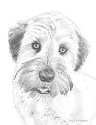 40 Raigan Art Classes Ideas In 2020 Dog Drawing Animal Drawings Dog Art