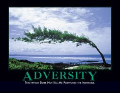 Adversity    That which does not kill me postpones the inevitable.