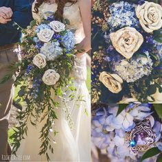 Storybook Rose Cascading Bouquet Blue Flowers Wedding