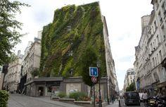Des experts réunis pour développer la végétalisation de Paris