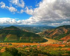 I Like It Natural And Attractive...Always In Douro's Valley In My Country Portugal !... http://samissomarspace.wordpress.com