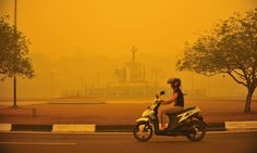Indonesia's fires labelled a 'crime against humanity' as 500,000 suffer - 30 octobre 15