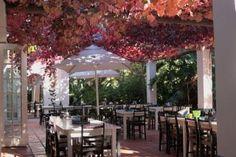 'What a beautiful space!' - thanks, Laurenz Schaller on www.facebook.com/vanloverenwines Fabulous Foods, Beautiful Space, Van, African, Patio, Table Decorations, Facebook, Dining, Outdoor Decor