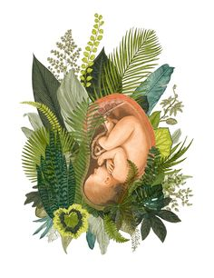 The Language of Birth • By Stepha Lawson. Birth Art, Birth Inspiration, Pregnancy, Feminine Wisdom, Goddess, Baby, Birth, Midwife Art, Pregnancy Art, Baby Art, Botanical Illustration, Baby Shower, Nursery Room, Labor, Labor and Delivery, Womb, Womb Art, Uterus, Prints for Sale, Tropical, Tropical Illustration