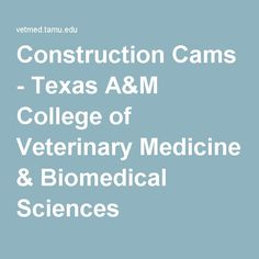 college webcams