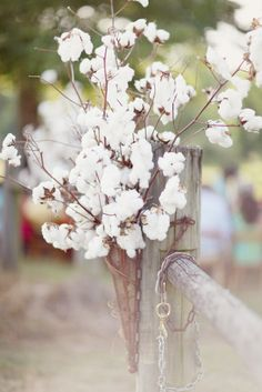 Photography: Simply Bloom Photography, LLC - simplybloomphotography.com Floral Design: Bloomwoods Weddings