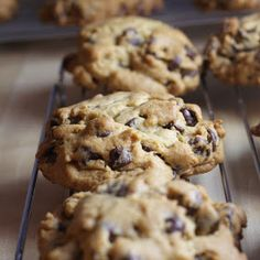 Kosher Cooking for Ordinary People: My Signature Chocolate Chip Cookies (a.k.a. Rum CCC's)