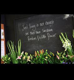 Pattersons Florist Botany | Flowers - Makeup - Nappy Cakes - Giftware | Botany, Australia