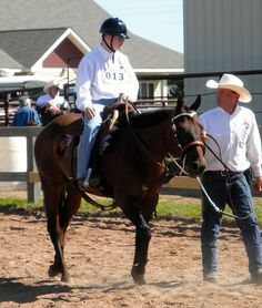 Minnesota Therapeutic Riding | This Old Horse | Therapeutic Riding and Special Olympics