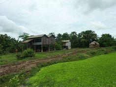 La campagne autour de Battambang
