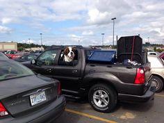 Saint in a car :)