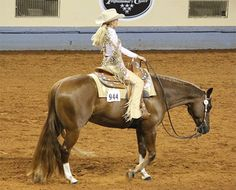 Horse Showing Trends and Fads – From a Judges Point of View!   My Horse University
