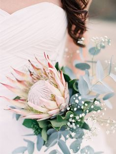 protea eucalyptus and babys breath wedding bouquet Flor Protea, Protea Bouquet, Protea Wedding, Floral Wedding, Wedding Bouquets, Flower Bouquets, Baby's Breath Wedding Bouquet, Babies Breath Bouquet, Babies Breath