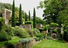 jardin en pente moderne avec muret de soutènement en pierre, cyprès et fleurs…