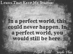 Perfect world - Simple Plan