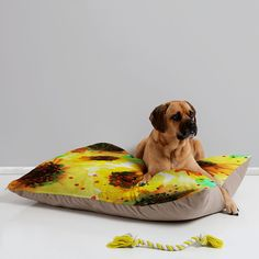 DENY Designs Joy Laforme Abstract Tropics 1 Pet Bed > New and awesome dog product awaits you, Read it now  : Dog Beds and Furniture