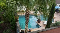 My backyard from my neighbors view.