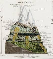 Resultado de imagem para alexander von humboldt maps