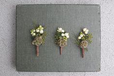 snowberry & scabiosa