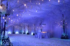To have an amazingly alluring and charming wedding, a bride would want to go with the winter wonderland theme. Winter Wonderland Wedding Theme, Winter Wonderland Decorations, Wonderland Party, Popular Wedding Colors, Winter Wedding Colors, Frozen Wedding Theme, Wedding Themes, Wedding Decorations, Winter Maternity Outfits