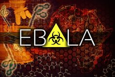 Ebola: WHO Turns To Experimental Drugs, But Not Proven Natural Remedies